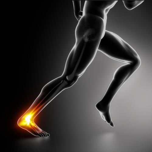 injury rehabilitation physio